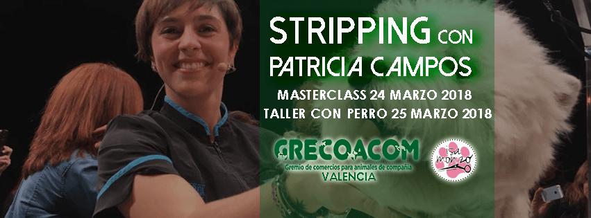 Portada Seminario de Stripping con Patricia Campos en Valencia 851x315