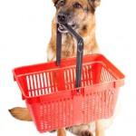 tienda de animales, tienda de mascotas Valencia